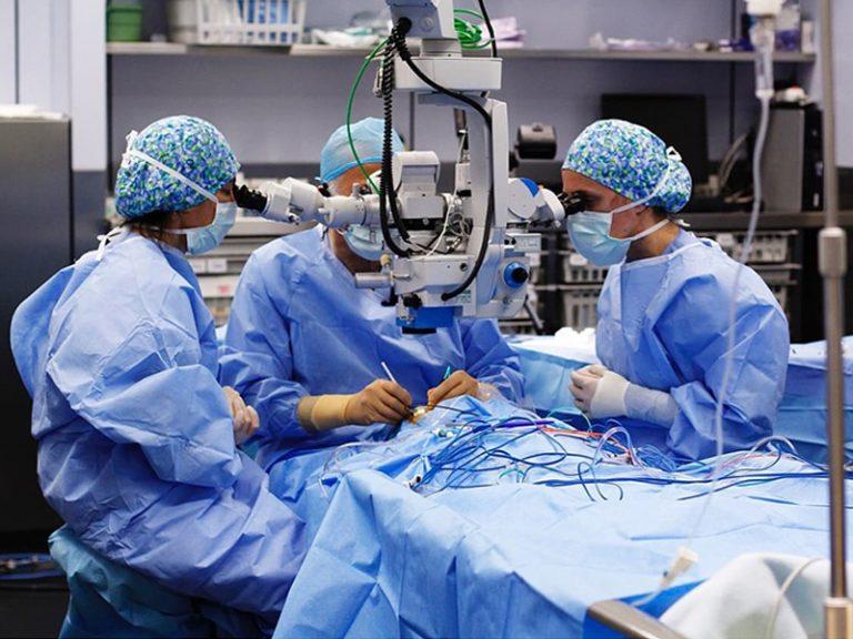IMO, una nueva forma de entender la oftalmología