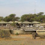 Pilar Latorre World Cuisine. Una experiencia africana de lujo