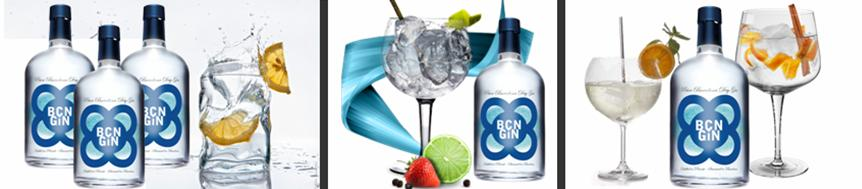 PNT BCN GIN EXPERIENCE 6