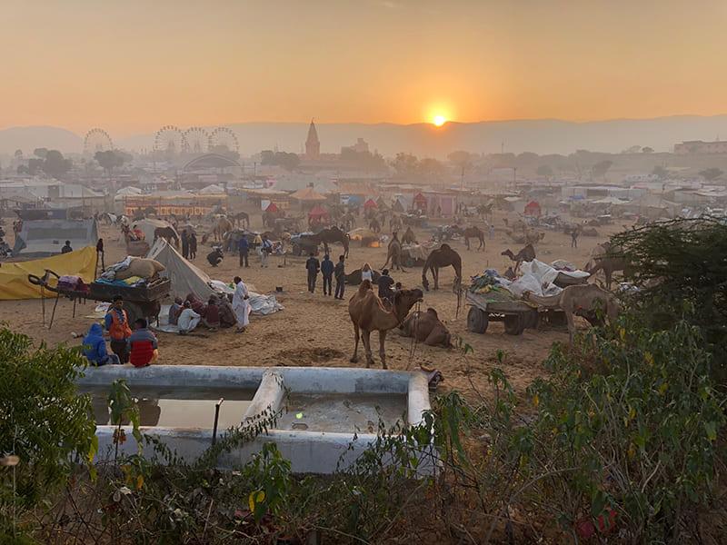 El sur de la India: un viaje imprescindible