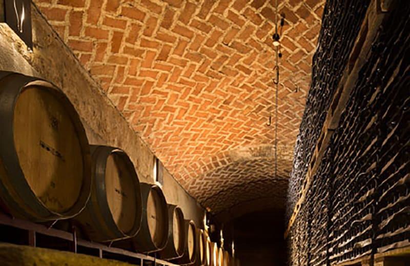 VINS EL CEP 2019: unos vinos y cavas que apuntan a lo más alto